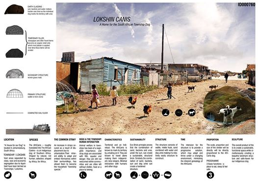 Architecture House Competition 1st place in 24h competition - a house for my dog - architecture
