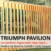 Competition Triumph Pavilion 2015