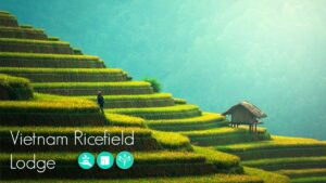 023-IMAGEN.jpg Vietnam Ricefield Lodge Architecture Competition