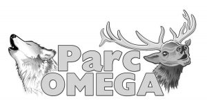 LogoPOnoir.jpg Radical Innovation Special Edition Parc Omega Design Competition