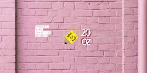 team212019-03-02T14-07-000000.jpg Brilliant Brand Awards - 2020